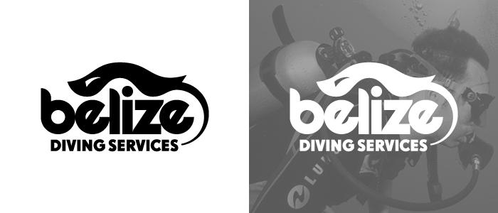 bds_logos